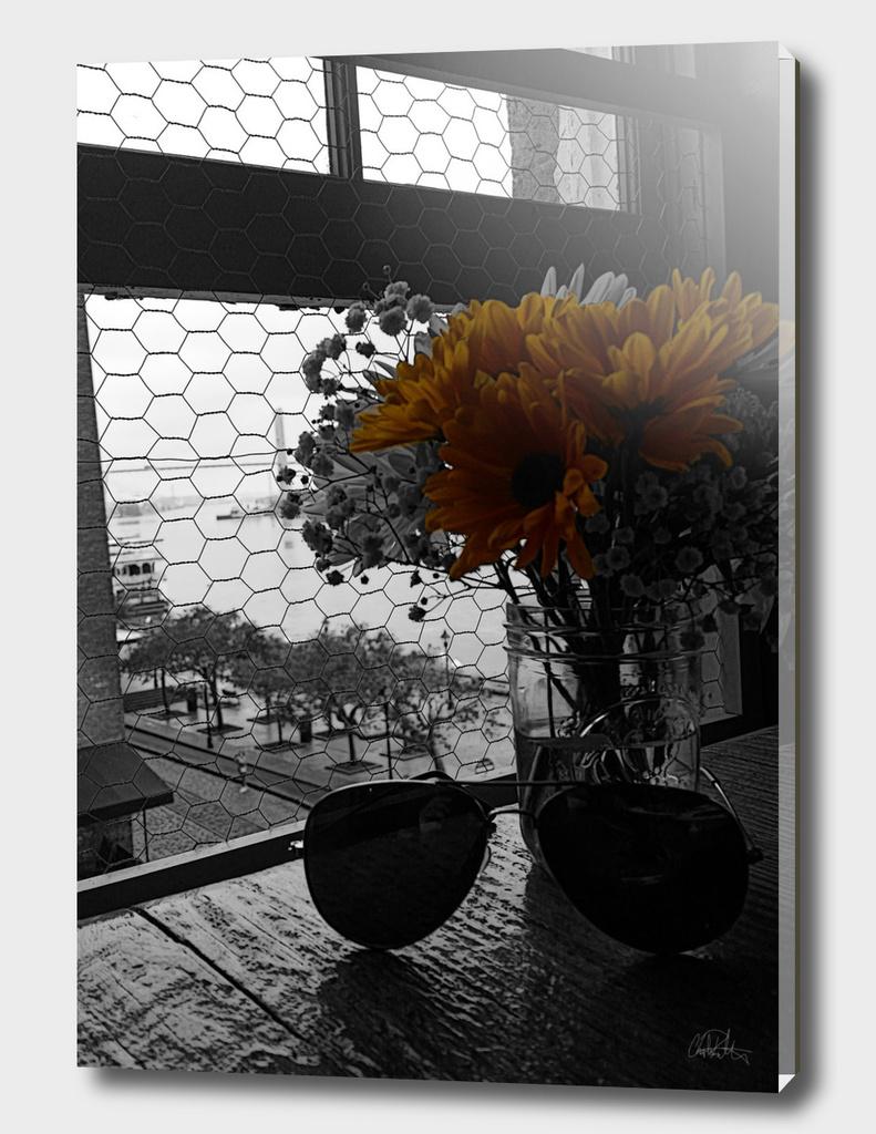 The Sun Flowers Gaze