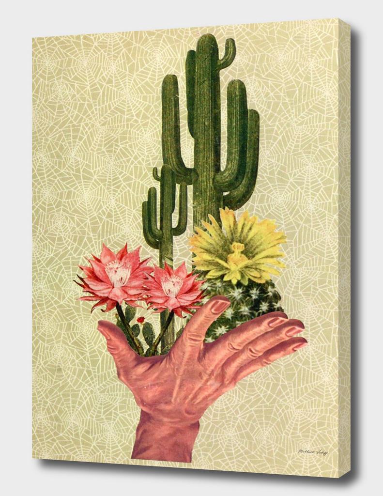 Desert Blossom. Handled Delicately
