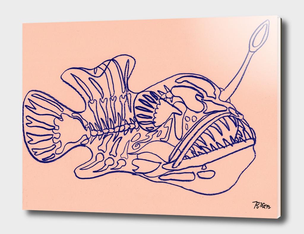 Angler Fish Skeleton