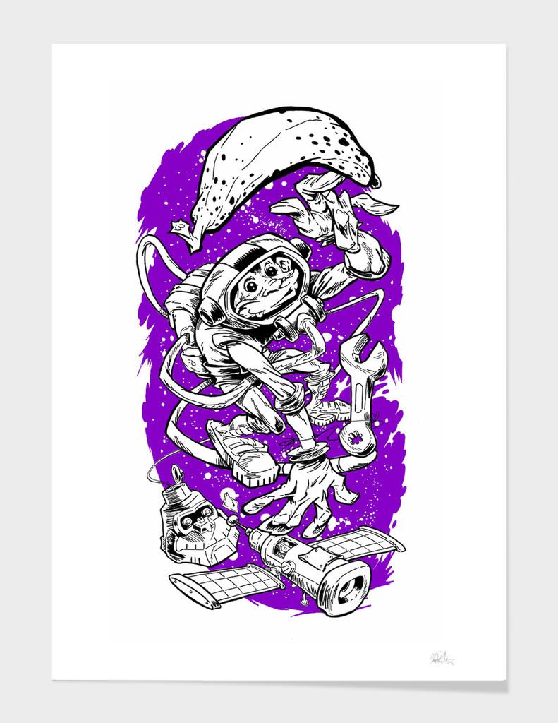 Space Monkey ADD