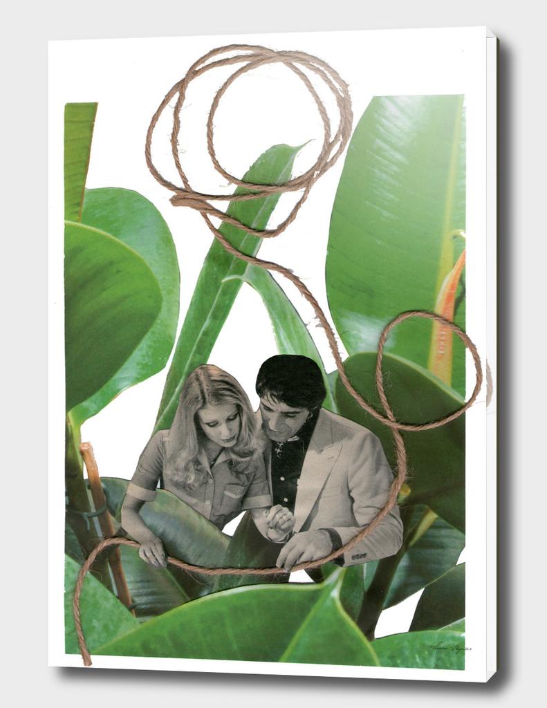 couple jungle