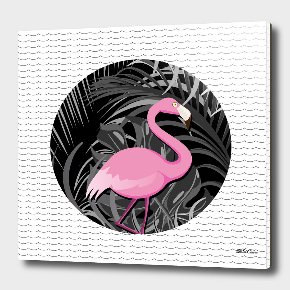 flamingo tropical
