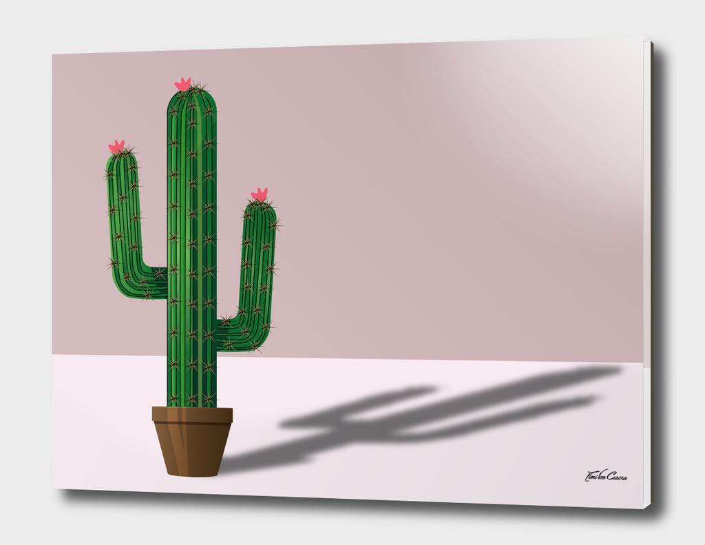 cactus Tripode