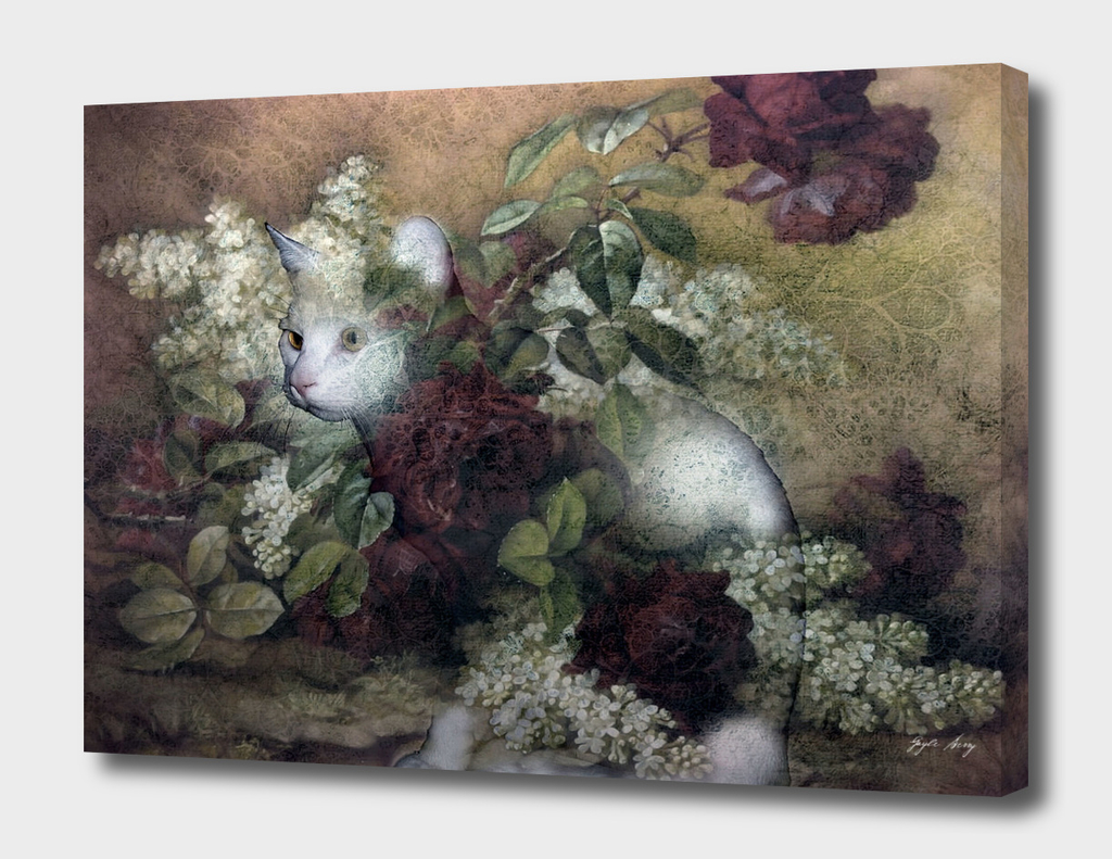 KITTY FLORAL 002