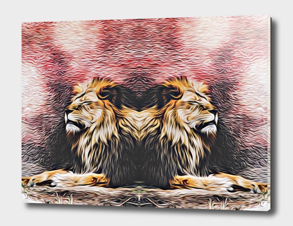 two sleeping lions with red and brown background