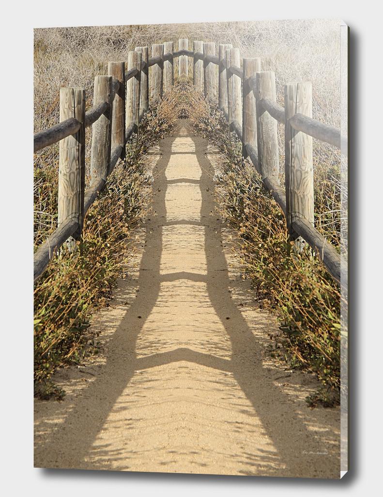 sandy walkway with wood fence