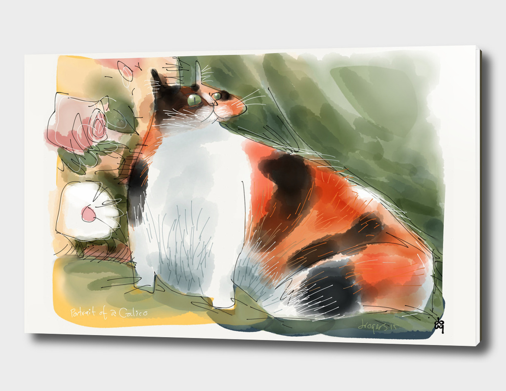 Portrait of a Calico