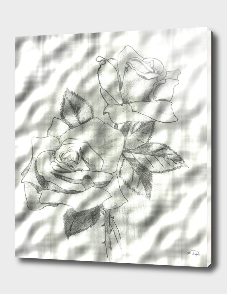Two Roses Enhanced