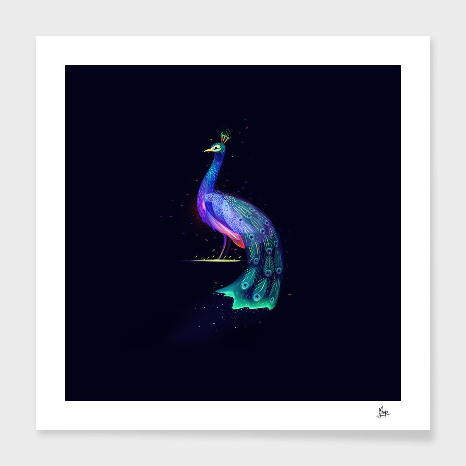 Fantasy Peacock