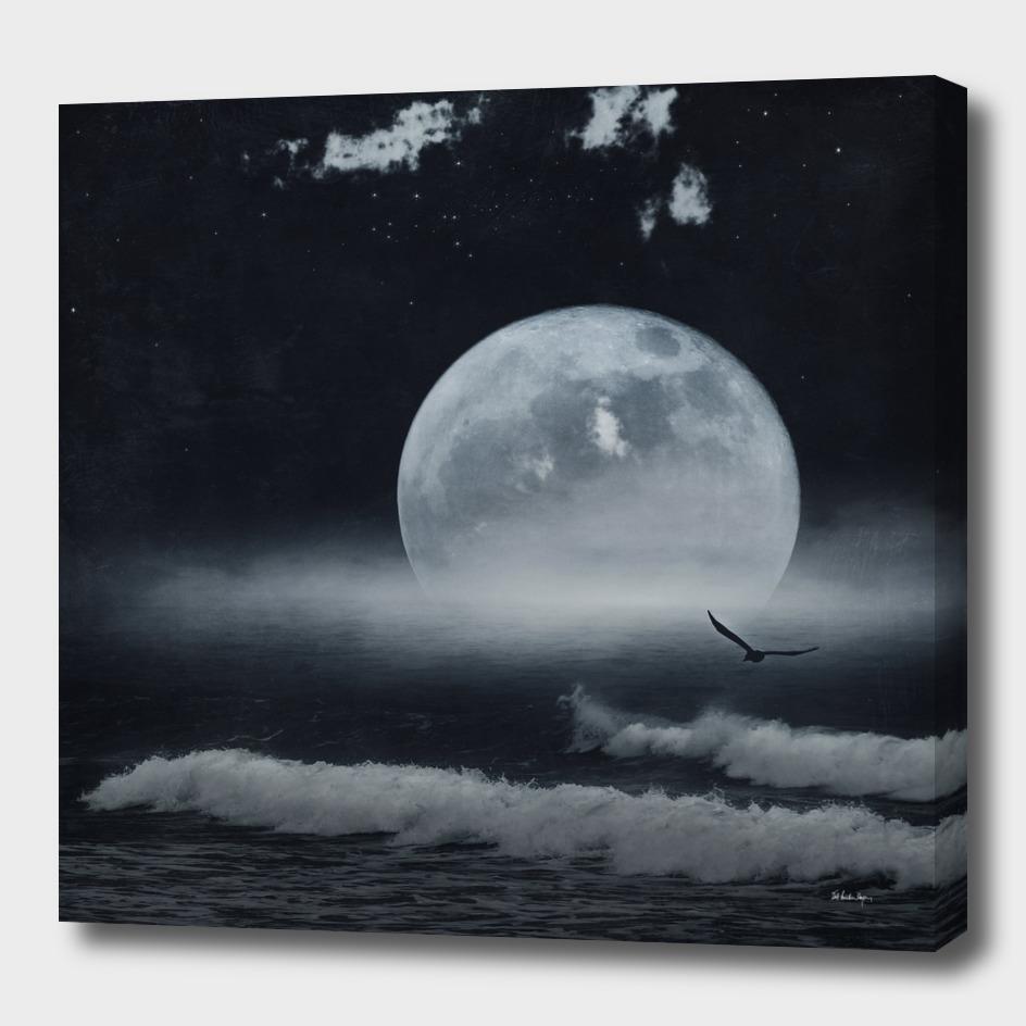 moon-lit ocean