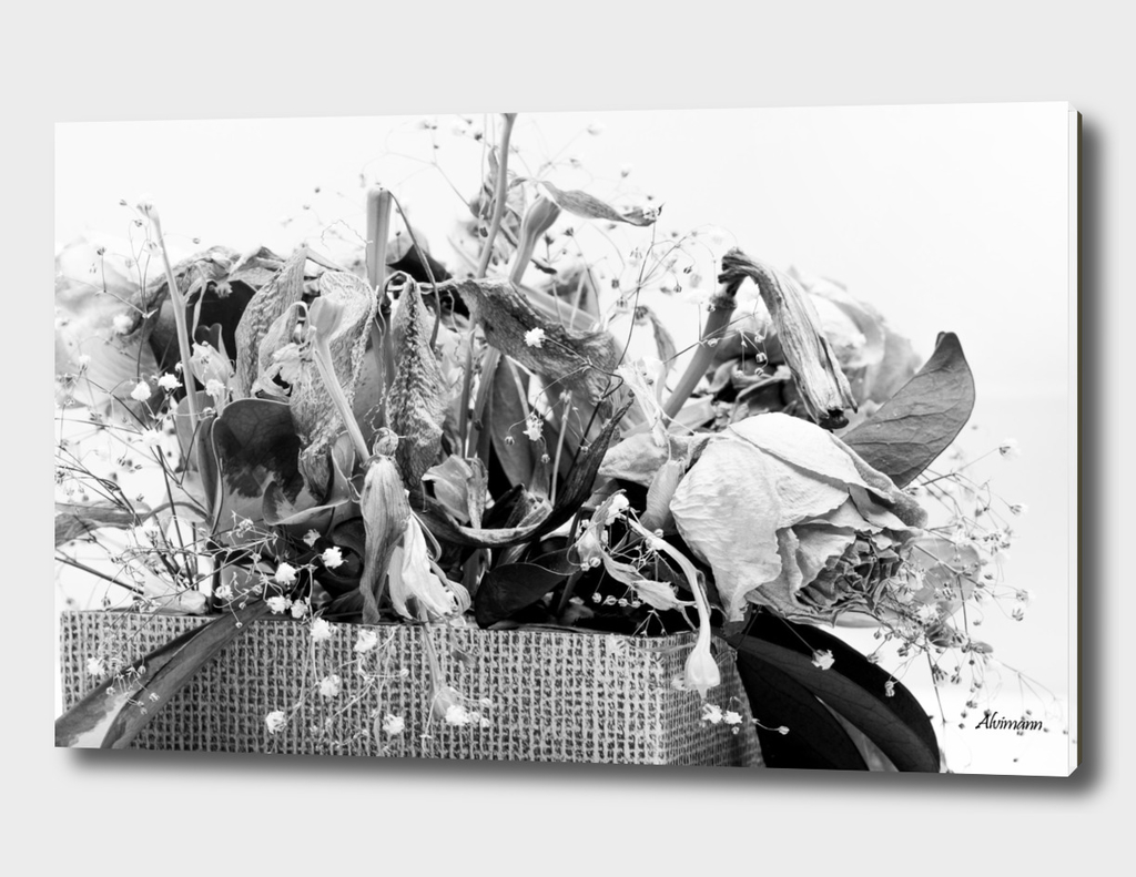 Dead Flowers in Black and White