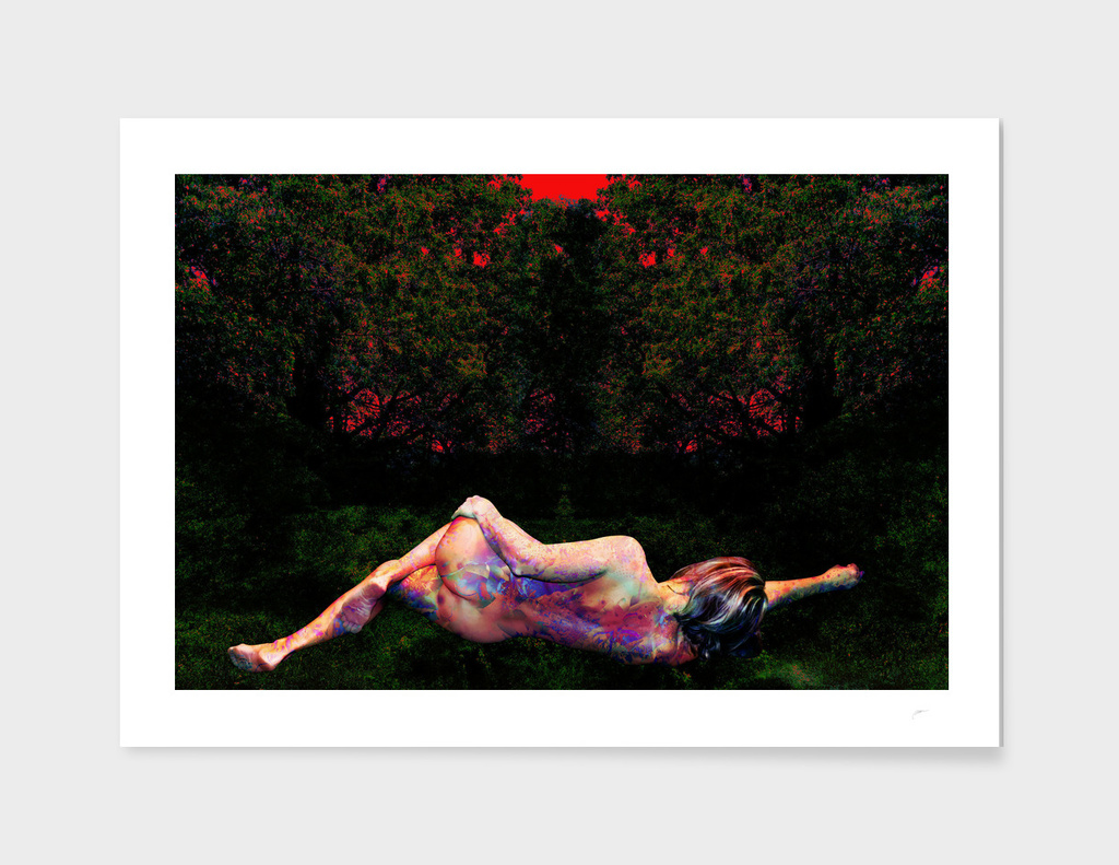 RECLINING VENUS ON THE GRASS A