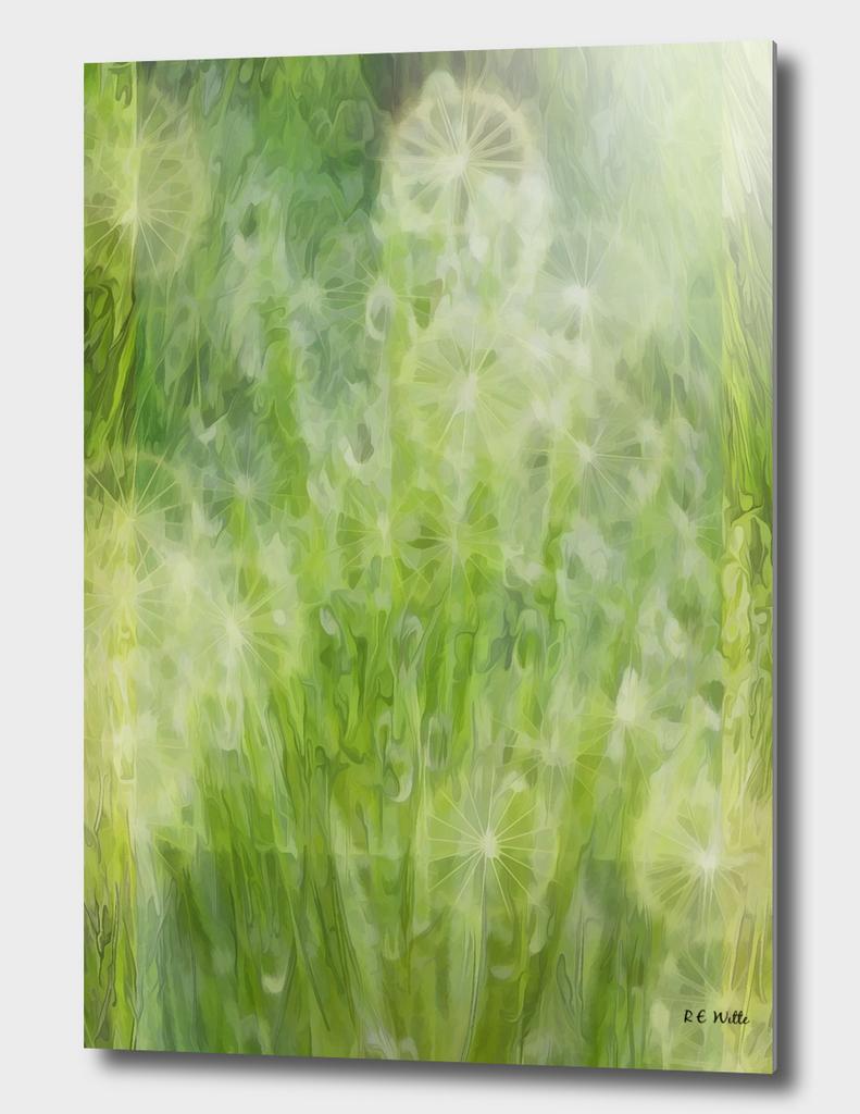 Milkweed Ephemera Dancing Amid the Grass