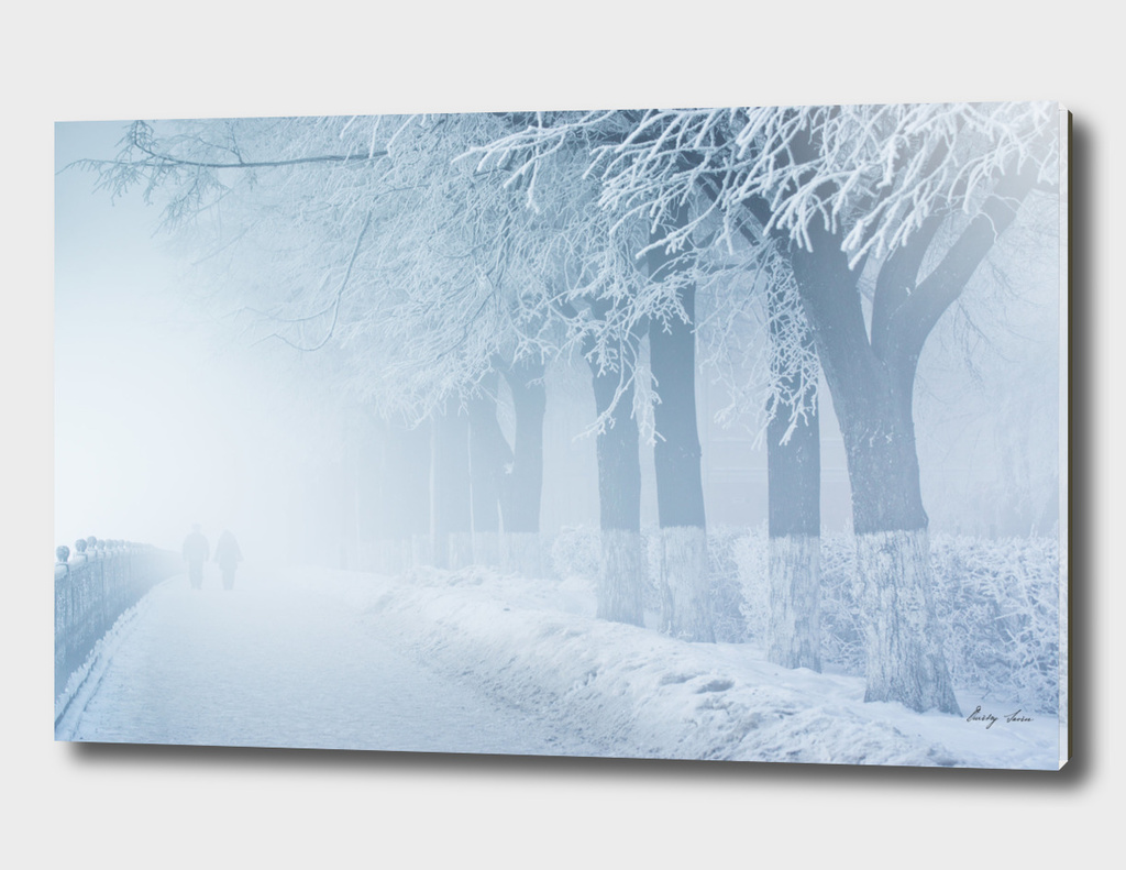 People are in a fog on snowy embankment