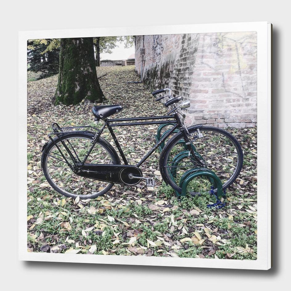 bicicletta 10