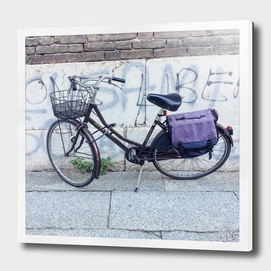 bicicletta 8