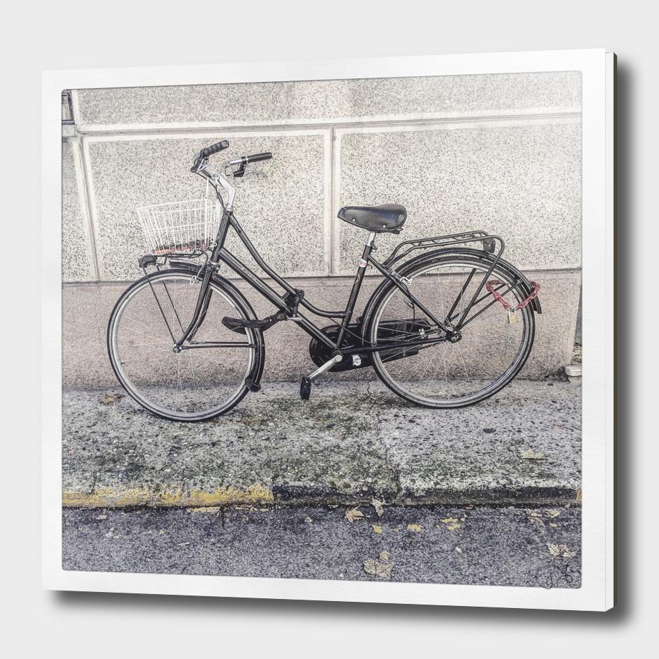 bicicletta 11