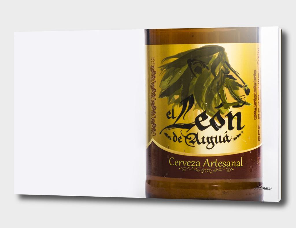 El Leon de Aiguá