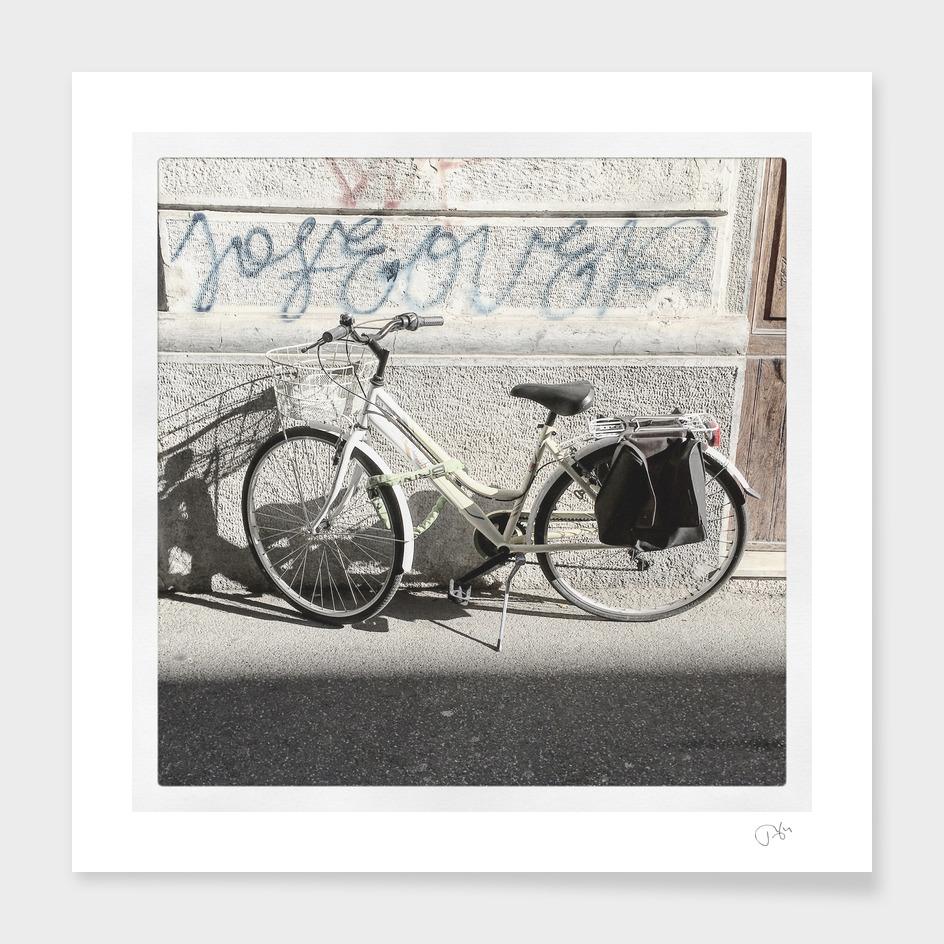bicicletta 29