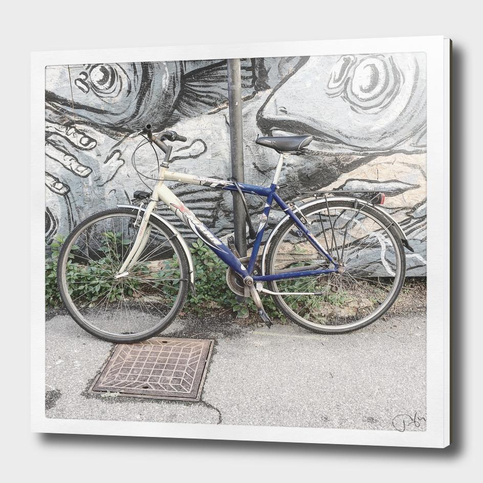 bicicletta 30