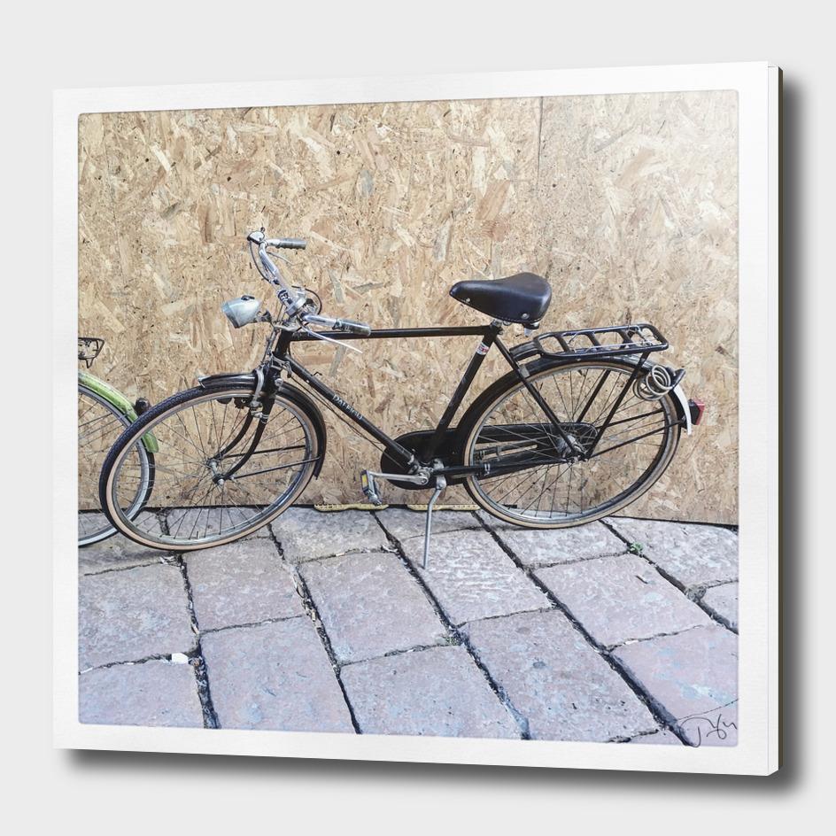 bicicletta 36