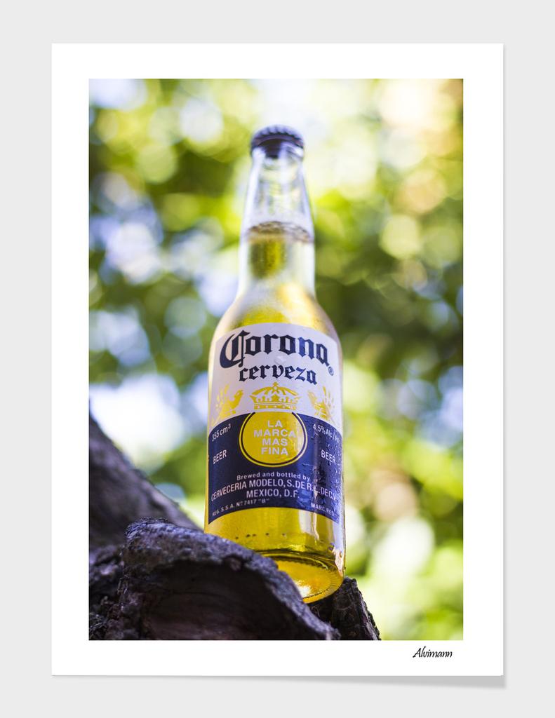 Corona's Bottle