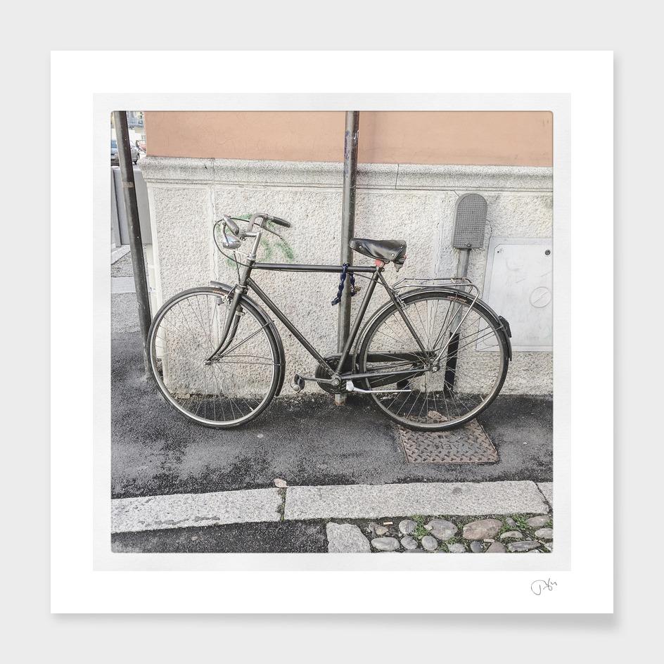 bicicletta 41