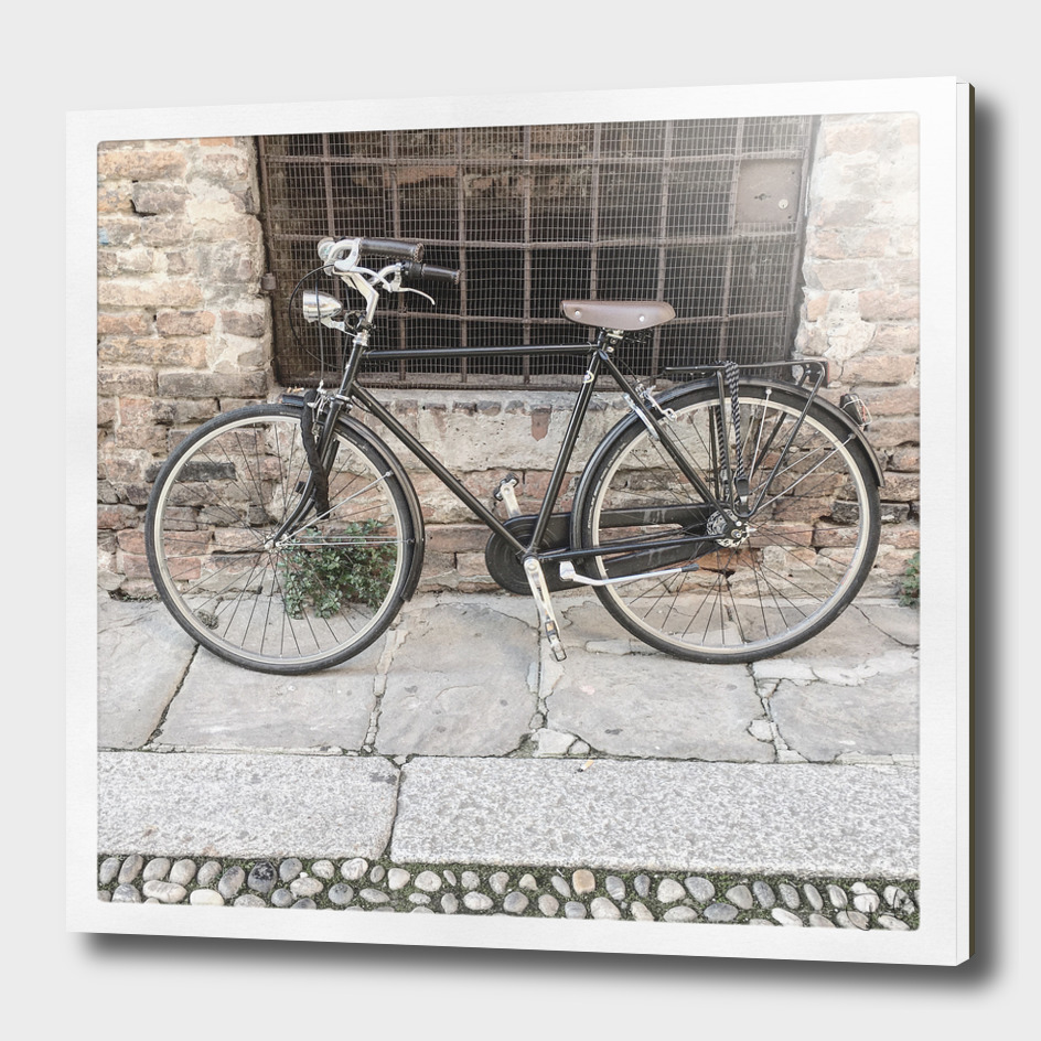 bicicletta 47