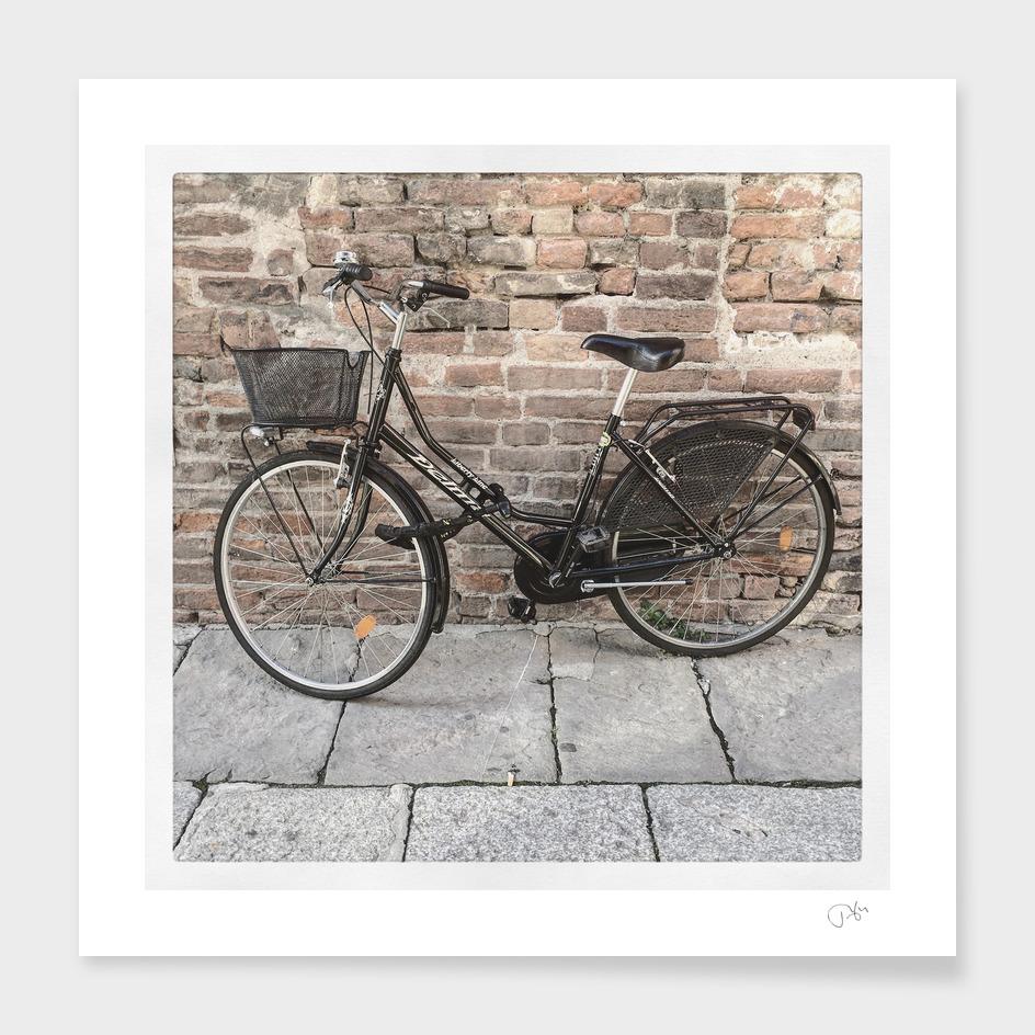 bicicletta 53