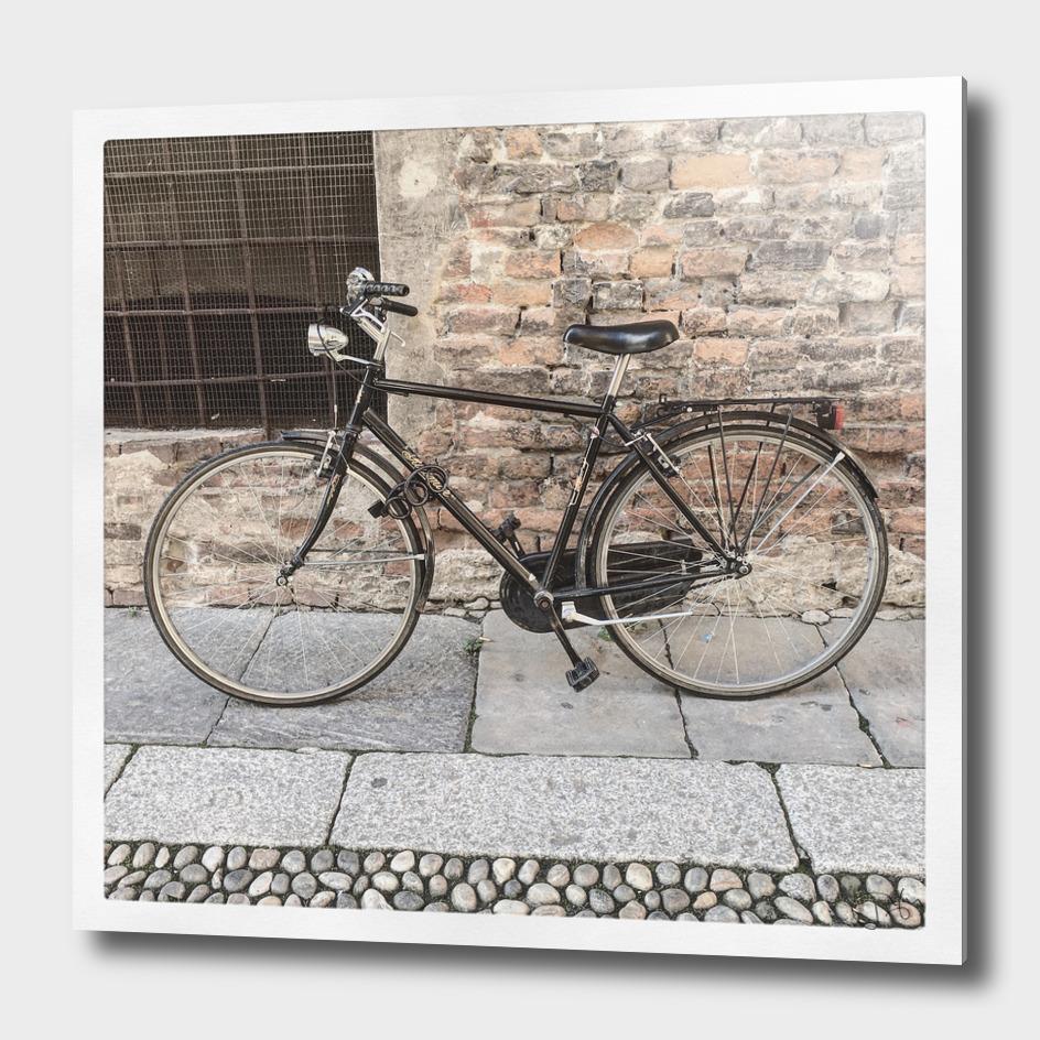 bicicletta 55