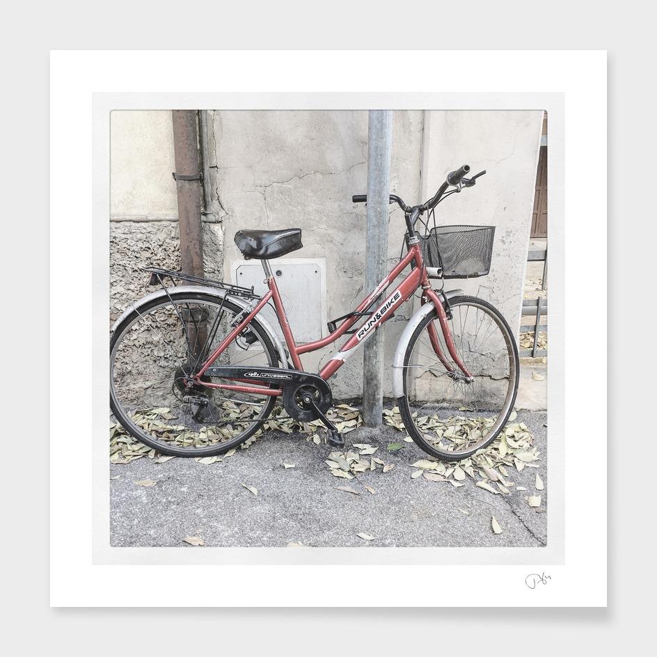bicicletta18