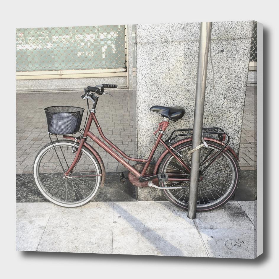 bicicletta 67