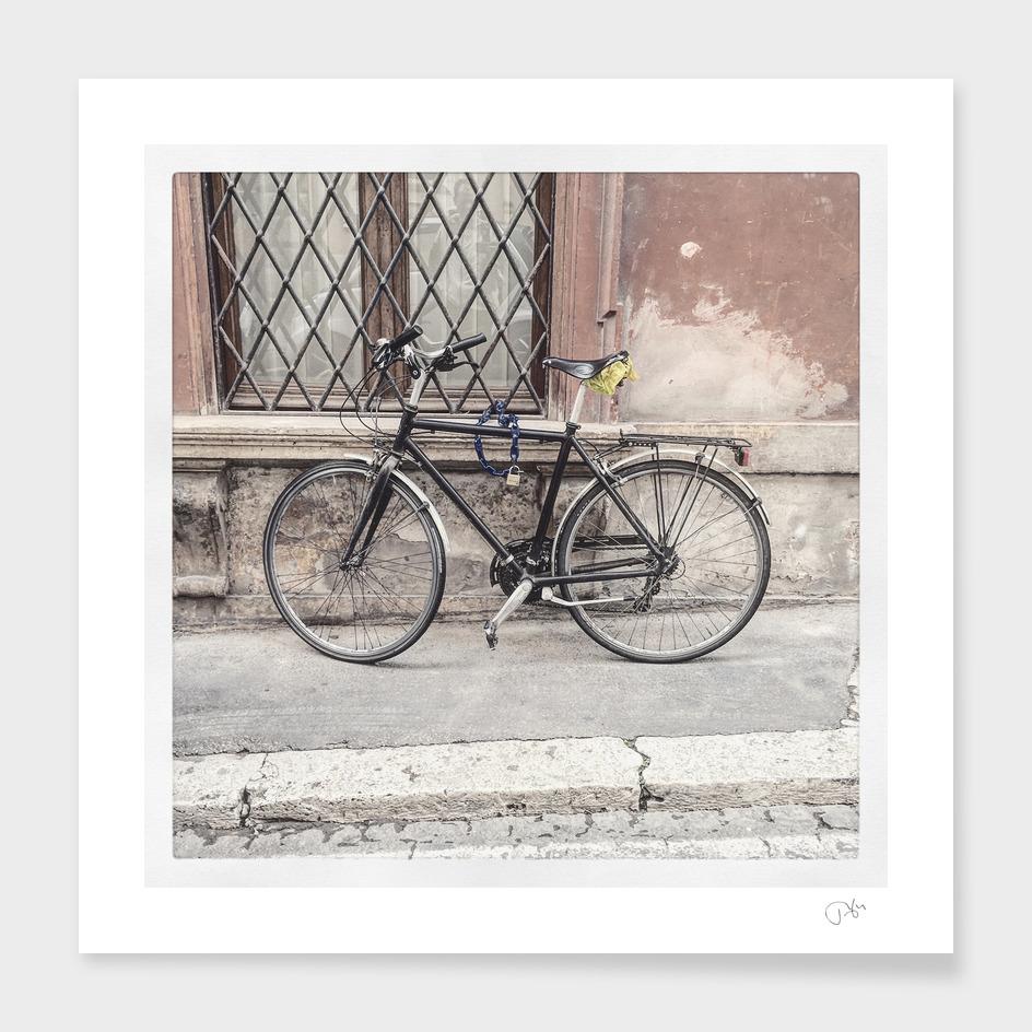 bicicletta 73
