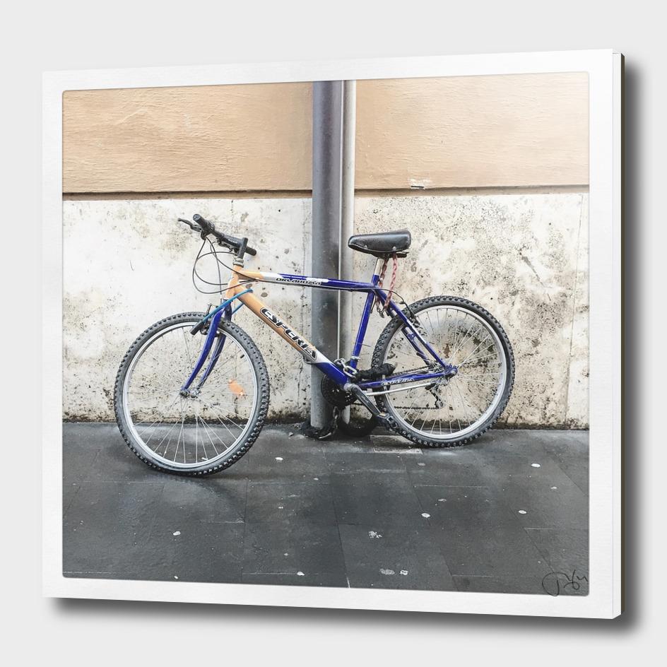 bicicletta 74