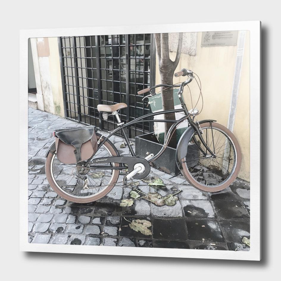 bicicletta 79