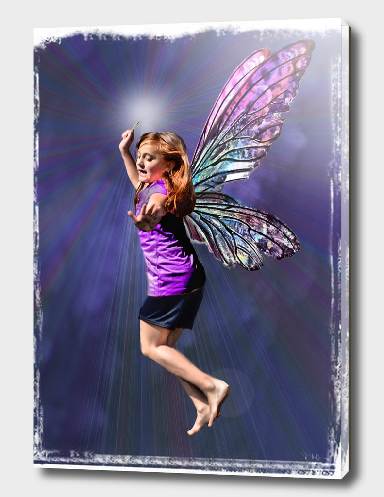 Fairy Flight