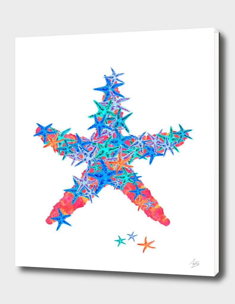 Starfish Coral