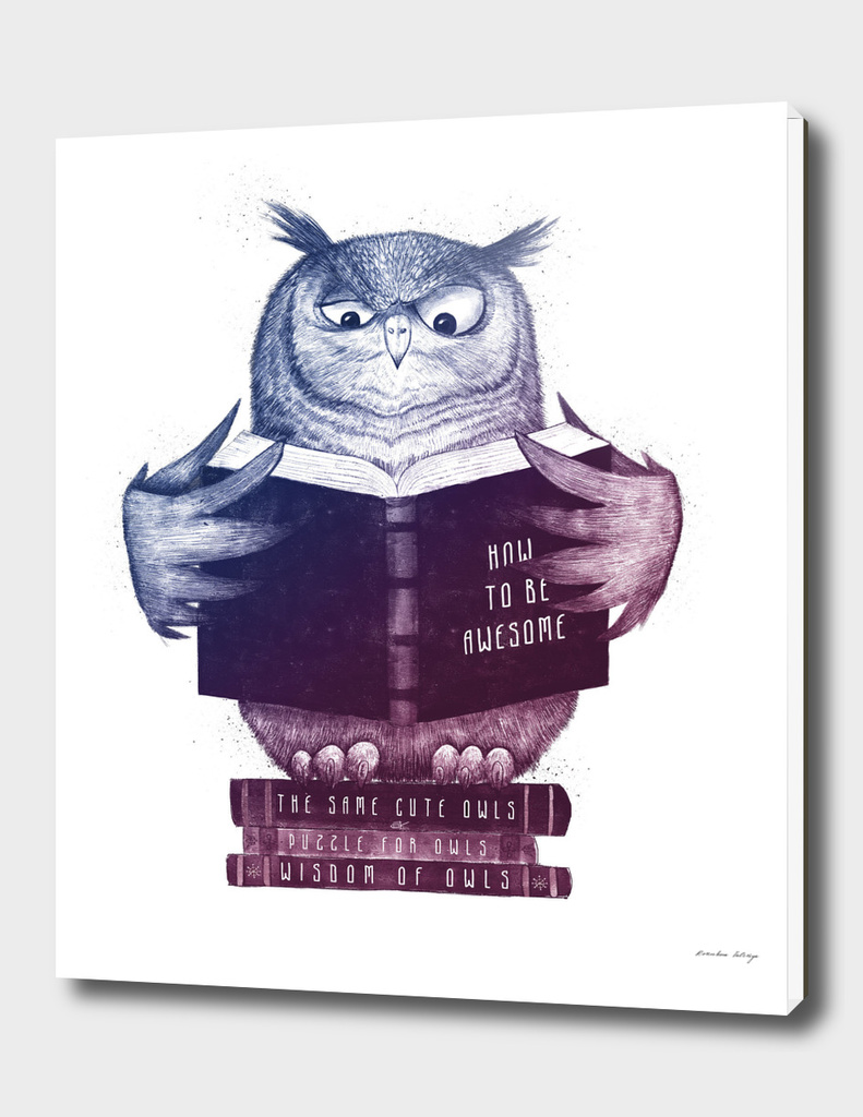 Wise owl in color