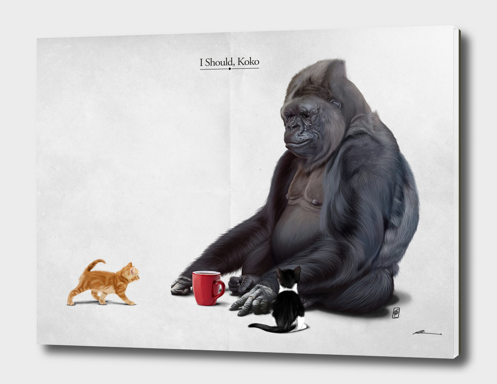I Should, Koko