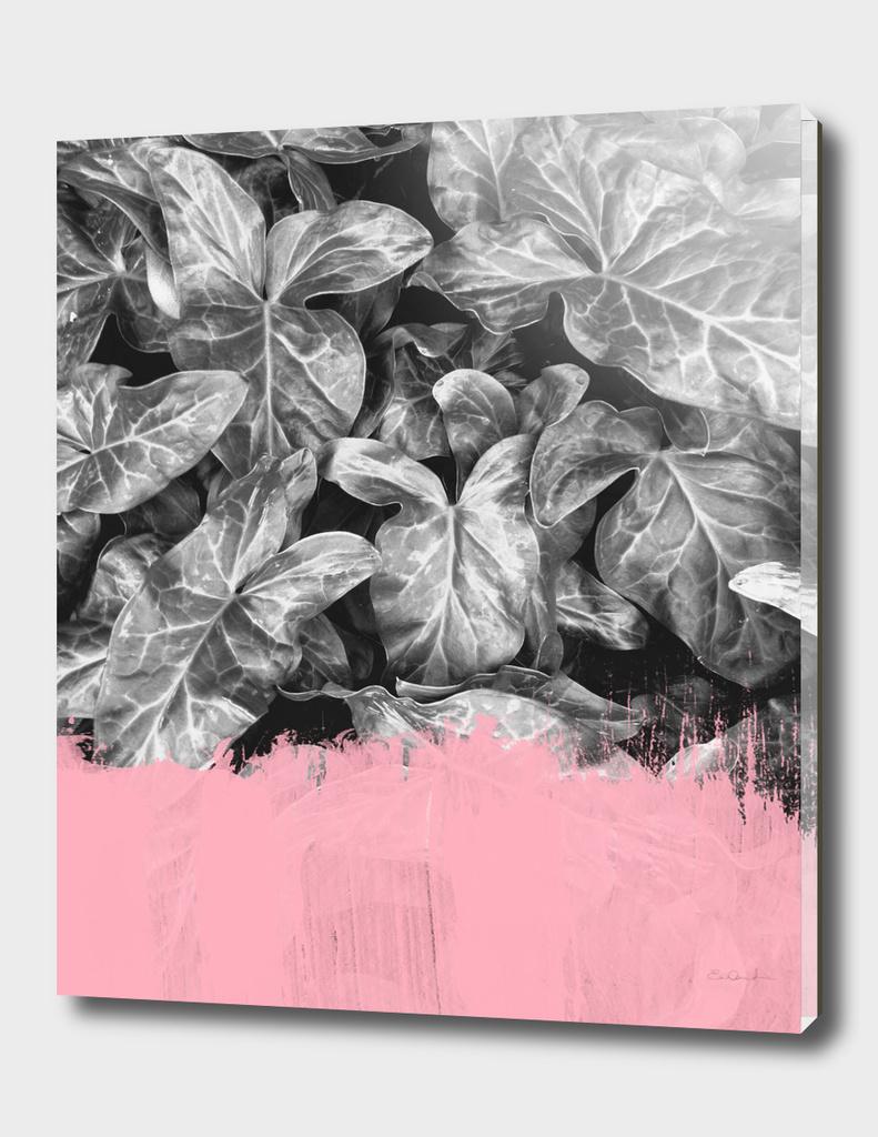 Sweet Pink on Jungle BW