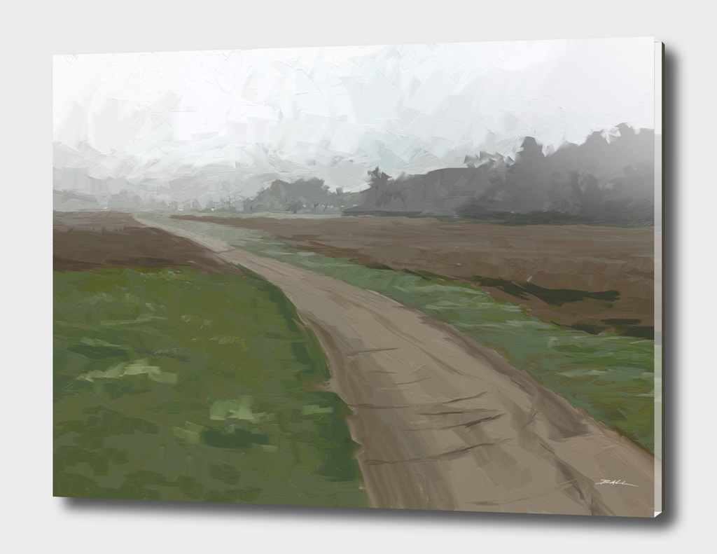 Meadow Fog