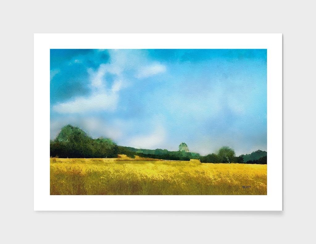 Felder (fields)