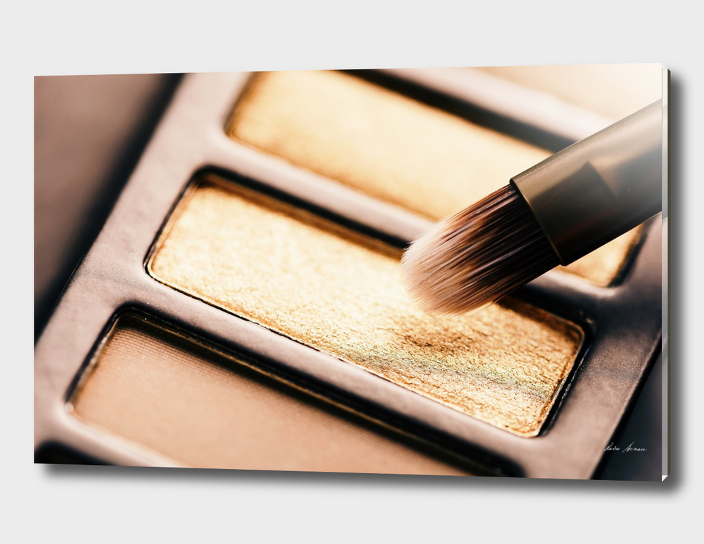 Professional Makeup Brush And Eye Shadow Color Palette