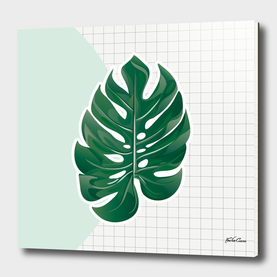 monstera verte feuille carreaux
