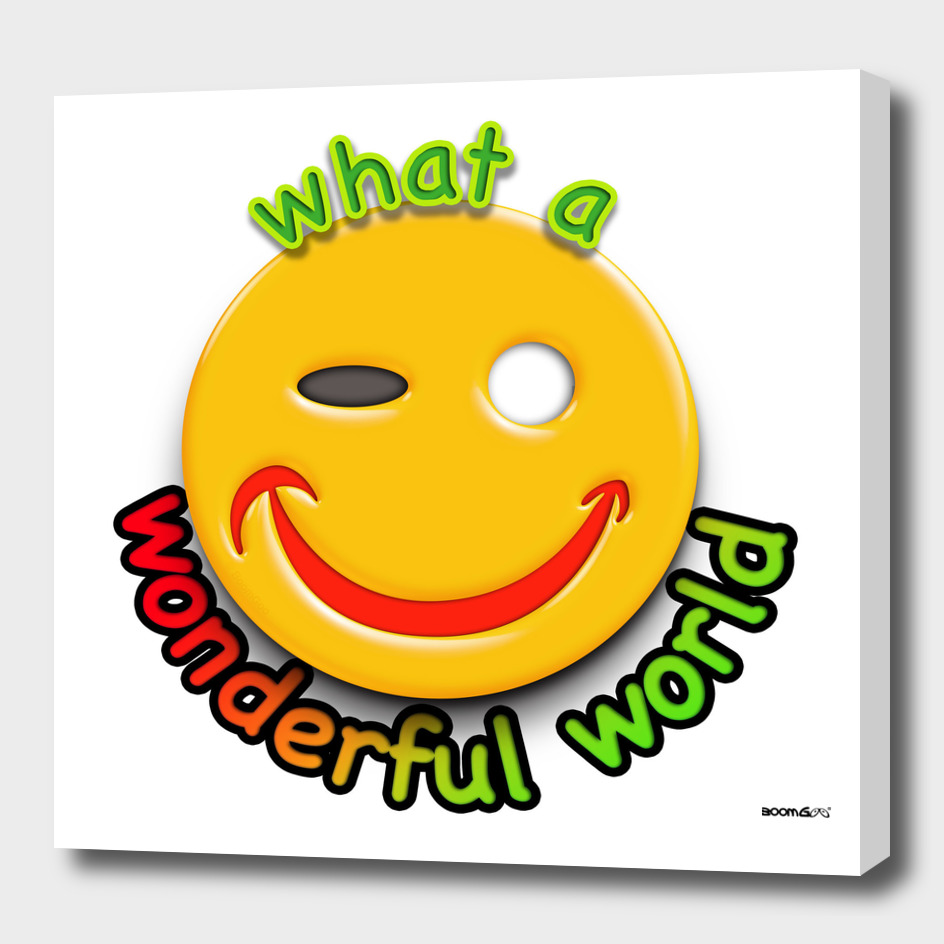 Boomgoo's Smile - Wonderful world  (11140)
