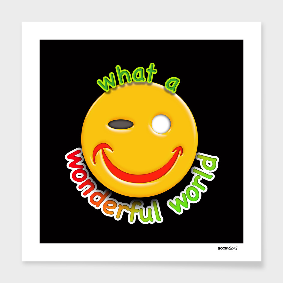 Boomgoo's Smile - Wonderful world  (11270)