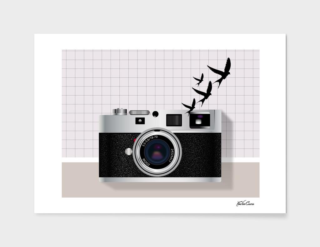 vintage camera and birds
