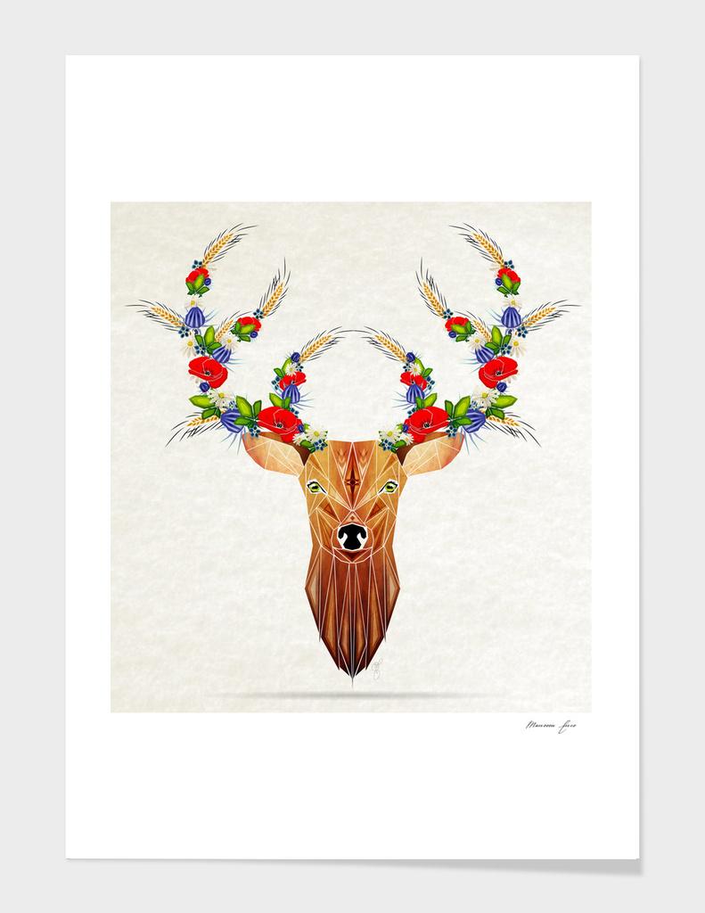 deer spring