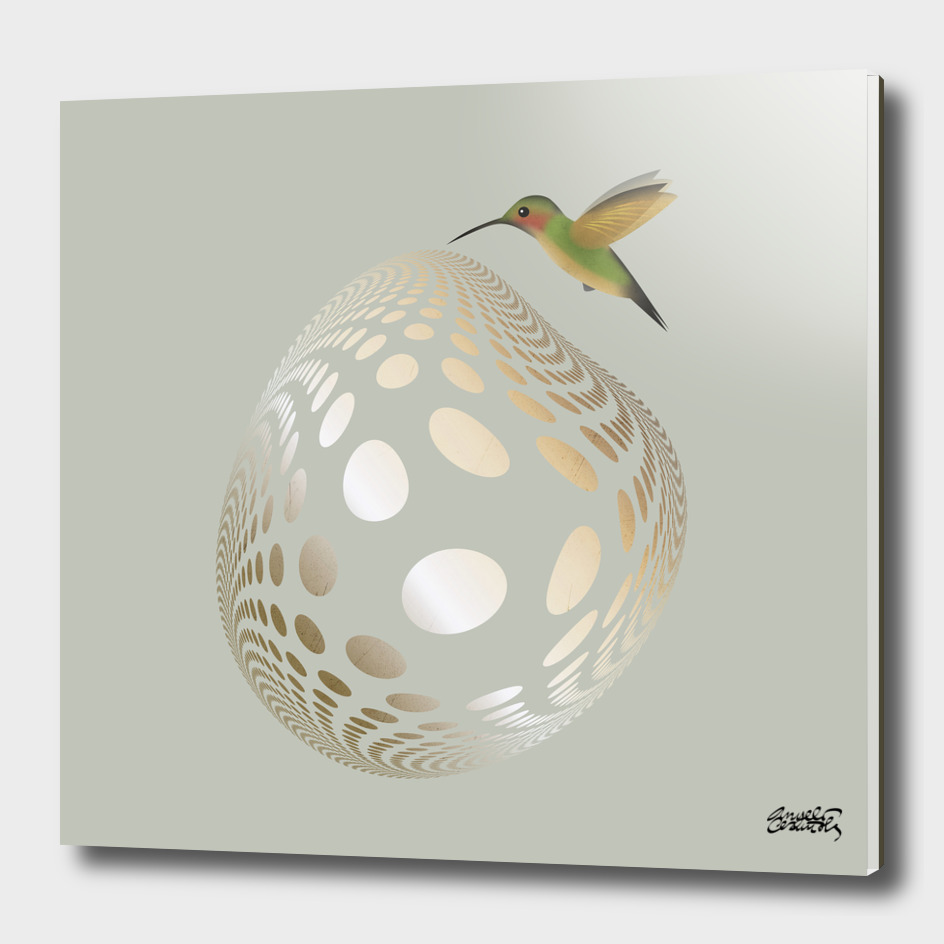 Hummingbird and Bubble