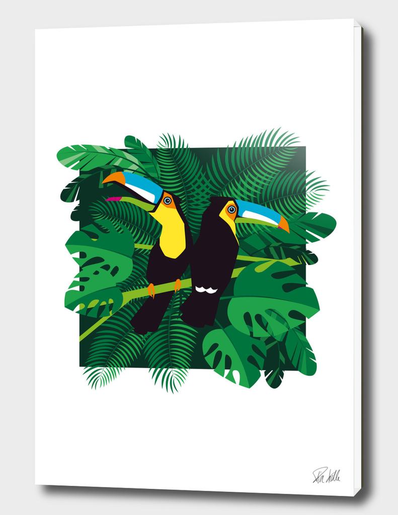 Tropical Summer Toucans